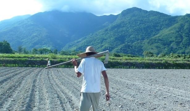 【公民寫手】從農之路- 在渾沌中播種,讓希望發芽