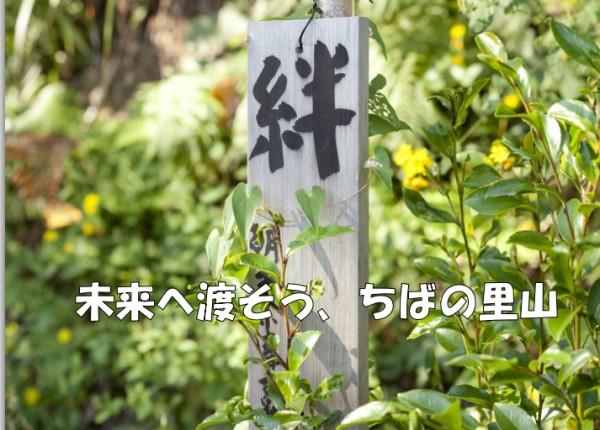 重新思考土地的價值 日本千葉里山經驗分享