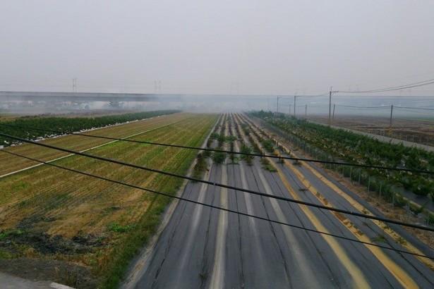 焚燒稻草看法兩極 農民:提升稻草價值才是解決之道
