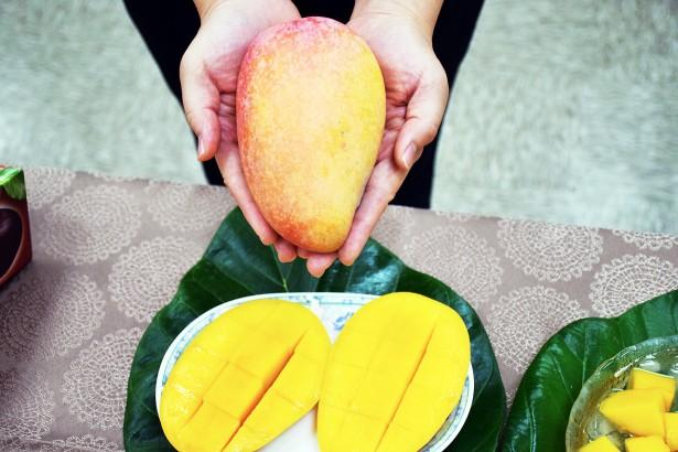 芒果新品種「台中一號」甜度達19度香氣獨特纖維少