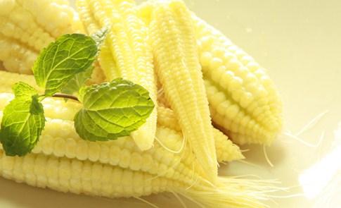 甜玉米說故事:玉米螟,看這裡