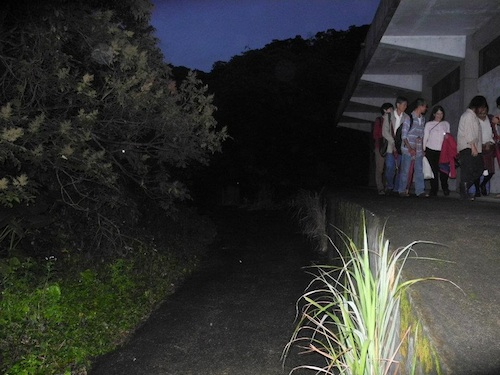廢棄的彈藥倉庫,每年母親節到7月之間是夜觀螢火蟲最好的地點