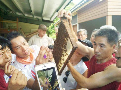 自學者養蜂在都市分享交流(圖片提供/馮傑瑞)
