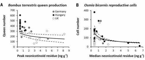 野生熊蜂(Bombus terrestris),以及習慣獨居的紅壁蜂(Osmia bicornis)繁殖情形與類尼古丁農藥殘留的關連(圖表來自科學期刊)