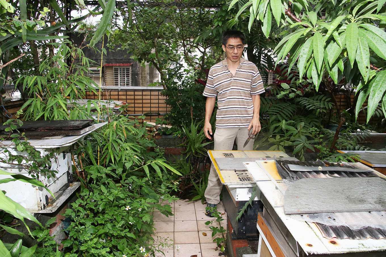 馮傑瑞在頂樓建立蜜蜂的食物廊道(攝影/孔德廉)