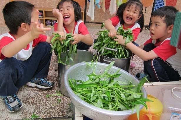 【公民寫手】小小農夫愛吃青菜