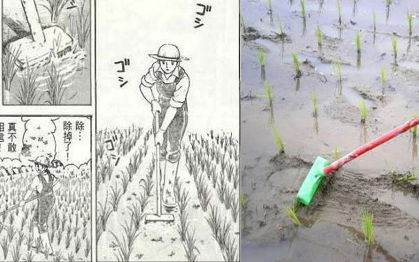 【公民寫手】「夏子的酒」作者尾瀨朗的親筆信─刷子除草的跨國交流