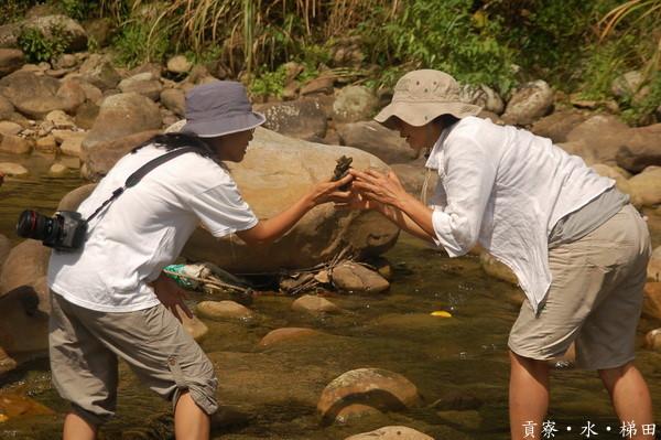 夏日,來當水中生物吧!–2012貢寮水環境知能研習