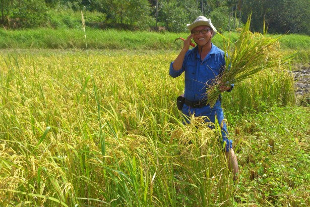 【公民寫手】收割希望之穀 支持青農回鄉路