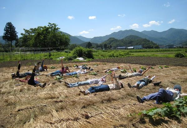 日本食農教育中的體驗學習─以「まほろばの里農学校」為例