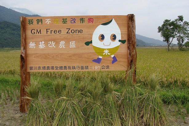【有機農業問答集】02-為何反對基改科技?基改不能解決糧食問題嗎?