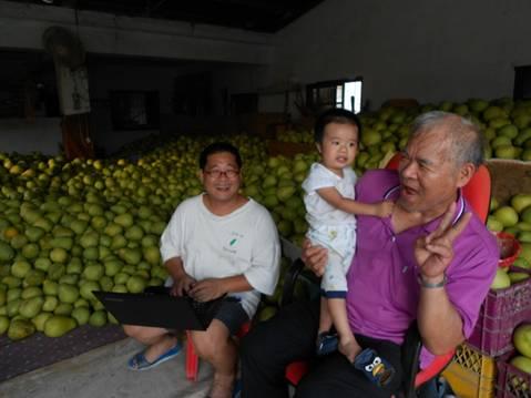 【公民寫手】無包裝柚子更助農 我們賣大柚子