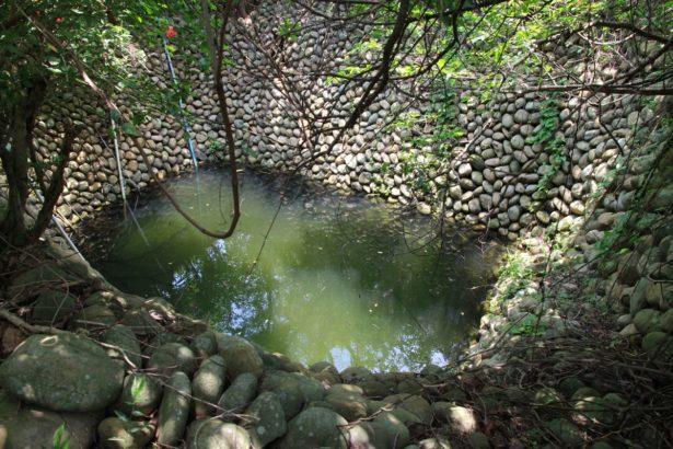 【公民寫手】蕉埔里山,水資源多元管道的智慧