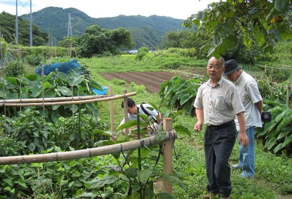 食農教育基地─社區菜園的多元思維