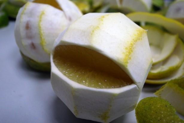 【公民寫手】寫給今年訂購崙山蜜柚、柳丁的朋友