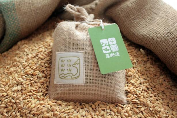 聽太平洋在唱歌的海稻米 用藝術活化休耕的米粑流