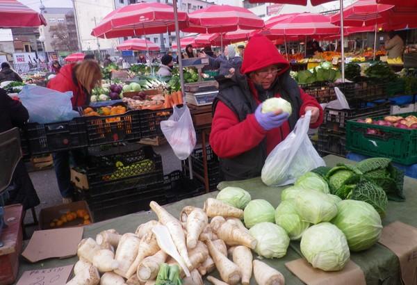 【公民寫手】克羅埃西亞空屋筆記(3)Squat人生 菜市場採集食物