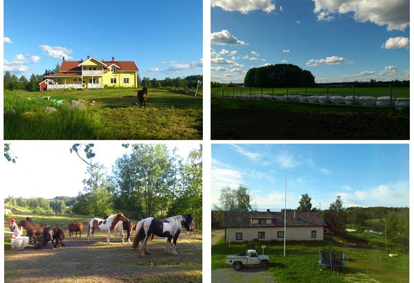 【公民寫手】在設計之都發現農業─芬蘭