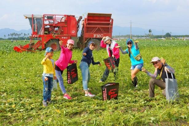為了凸顯毛豆的特殊價值,今年4月為美濃、旗山、里港地區首屆「毛豆節」,未來每年11月固定舉辦,希望更多台灣人能夠認識毛豆產業的重要性。