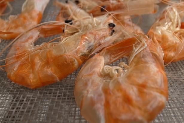 已經曝曬一天的蝦乾,有微微的香味,原來這才是蝦子該有的香味