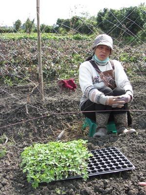 花田喜事農場徐妍花小姐談媽媽教的農業