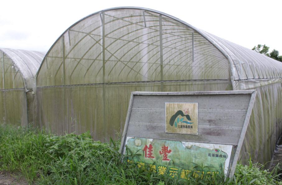 斑駁的招牌,突顯花蓮無毒農業名存實亡的現況。