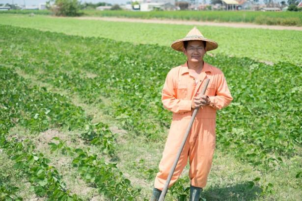 棄業從農系列專題(6)荳之鄉:一顆種子,就是農業的希望