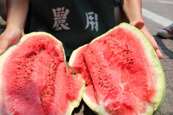 如何挑好西瓜:蒂頭濕潤新鮮,聲音如拍胸紮實