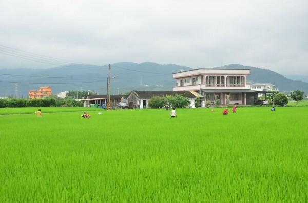 倆佰甲協助新進場的農民租賃農地,希望能鼓勵更多有熱情的人投入農業