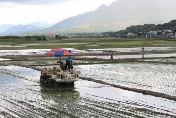 台灣要發展無毒農業島,但有機農業生產環境面臨鄰田污染的困擾一直不受重視,政府單位應想辦法推動有機農業專區或有機村,鼓勵慣行農民轉型有機農業,或朝向友善環境與健康的生產方式。
