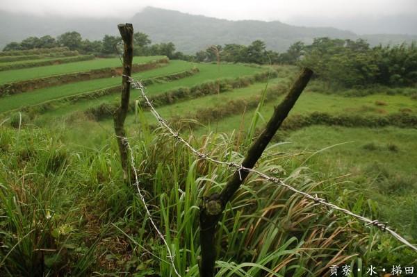 【公民寫手】心防線?別懲罰為環境努力的農人