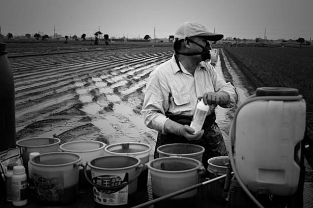 農藥處方箋制度 農委會與農藥業者拔河
