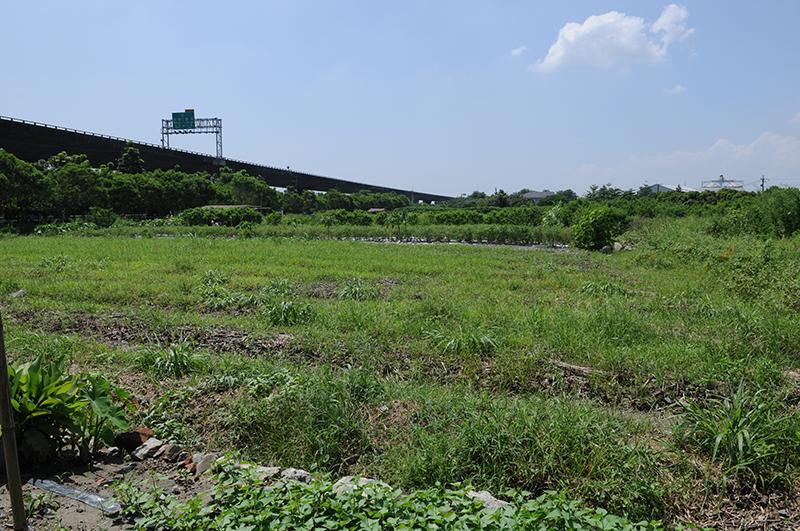 長治百合部落在六堆文化園區附近六公頃的心靈耕地