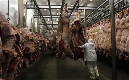 罰不怕 樹森再遭查獲進口禁用瘦肉精美牛 毒性較萊劑更強