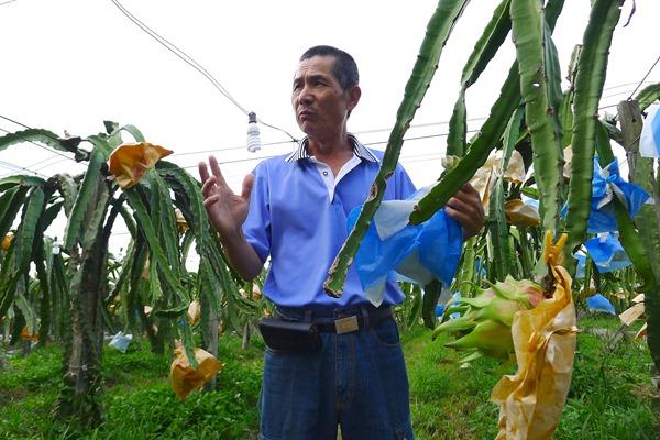范振清雖拿到模範農民,但他認為唯有地方團結發展,才能讓農業永續