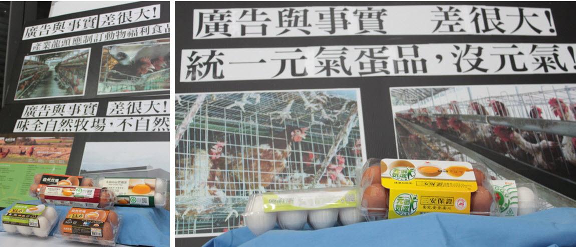 統一、味全的蛋品宣稱來自自然環境,蛋雞有元氣,事實上都來自格子籠。