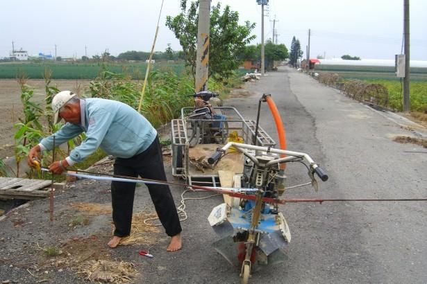 【公民寫手】[返鄉從農] 第一個挑戰,水果甜玉米栽培-整地與播種