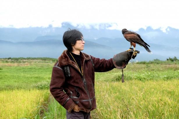 返鄉青年馴鷹趕鳥  專家:生物防治、營造棲地並行 讓生態永續