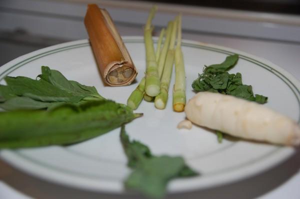 梵梵導演從豐濱帶來的藤心、蘆葦、翼豆(楊桃菜)、葛鬱金(白色像蘿蔔的)等野菜,煮成一鍋野菜湯,讓大家體驗家鄉傳統料理。