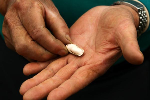 【公民寫手】關於黃麴毒素的疑問─花生農友如何看待檢驗?