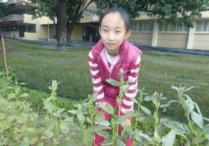 郭子憶對作物觀察仔細,蕎麥、小麥、大豆等作物在她筆下顯得活靈活現。 提供/吳忠勳