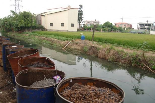 彰化電鍍廢水案 疑污染327公頃農地,農糧署抽檢11件農作物送驗中