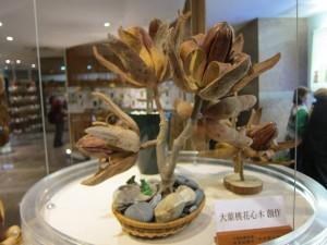 大葉桃花心木的果實做成的工藝品。 拍攝/楊鎮宇