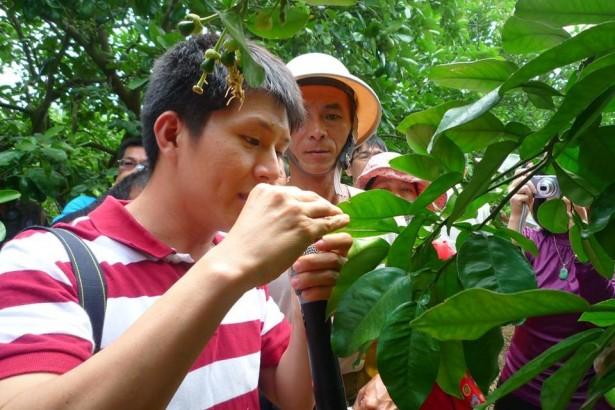 台南農改場博士群 用LINE為農友的作物看診