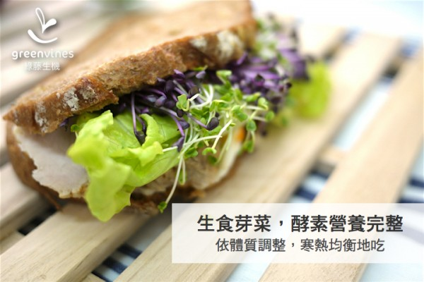 【公民寫手】芽菜迷思之二:芽菜生吃太寒,是真的嗎?