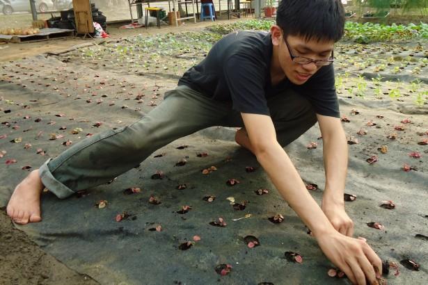 在農耕隊溫室赤腳工作的大男孩。