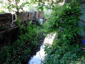 窟仔頭是地下伏流冒出所形成的活泉,早期是社區重要的民生用水來源,現已僅剩此段露出,其餘都已加蓋成為暗渠。照片劉彥甫攝