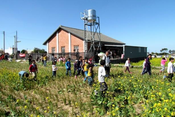 【公民寫手】食農教育  嘿呦~拔蘿蔔之旅!