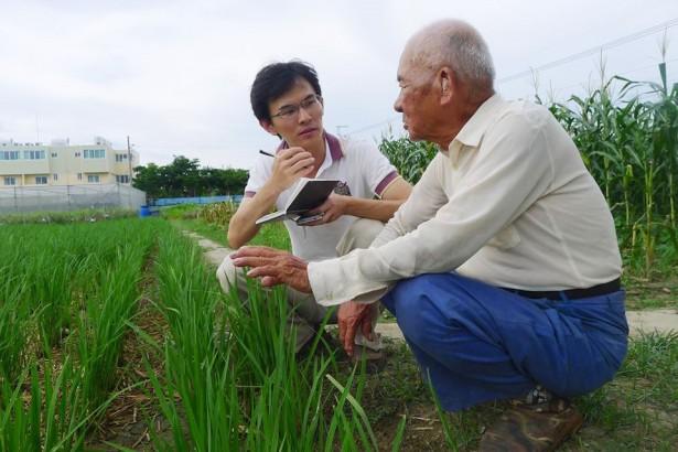 88歲高齡自然農夫 EM菌養地經驗公開傳授
