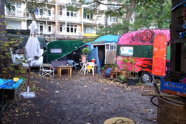 【公民寫手】【荷蘭通信】守護大樹的社區菜園佔領